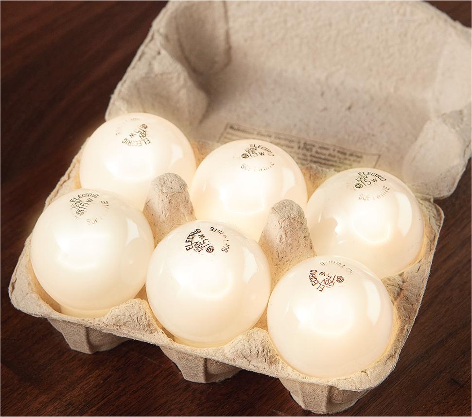 lightbulb eggs